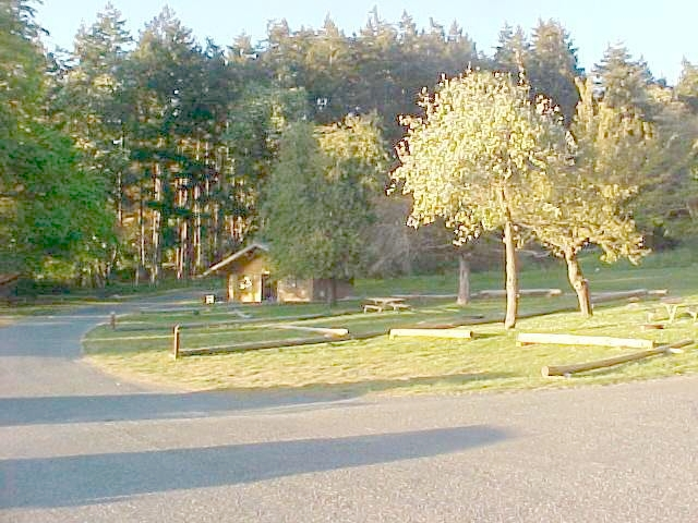 Picture of San Juan Island Campground.